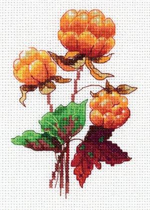 Набор для вышивания Морошка 10,5*14 см