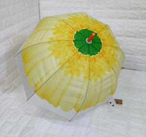 Зонт-трость цветной, д 120см