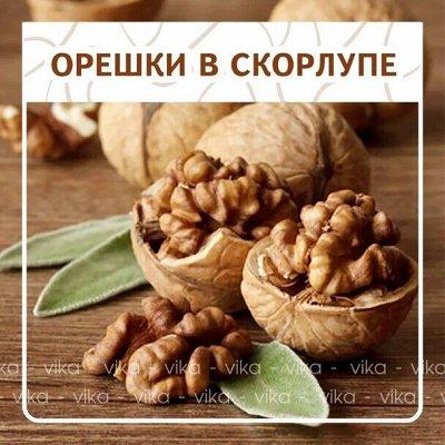 ✔Орехи, Сухофрукты. Ягоды. Специи. Быстрая раздача 🚀 — Орешки в скорлупе! — Орехи