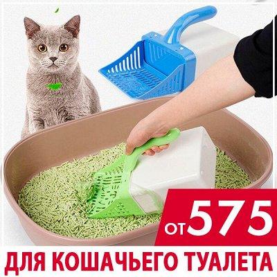 ASIA SHOP💎 Эффективные средства для мытья посуды — Для кошачьего туалета 猫厕所 — Туалеты и наполнители