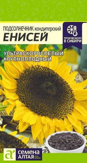 Подсолнечник Енисей/Сем Алт/цп 10 гр.