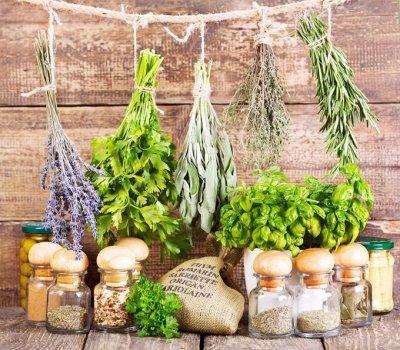 Экспресс! Мудрый дачник! Лук - Севок в наличии!✔ — Семена зелени и пряных трав — Семена зелени и пряных трав