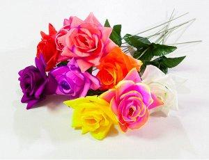 Роза открытая (штучка)