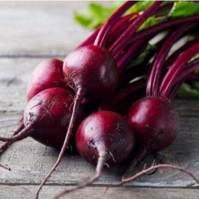 Новинки 2021! Невероятные. Урожайные. Алтайские. — Свекла — Семена овощей