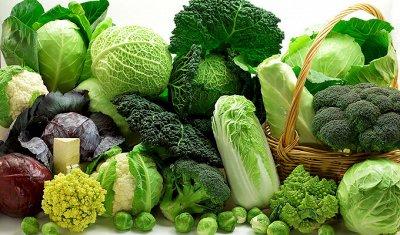 Семена: Цветы Овощи Цены от 6 руб — ❤ Семена овощных культур. Капуста — Семена овощей