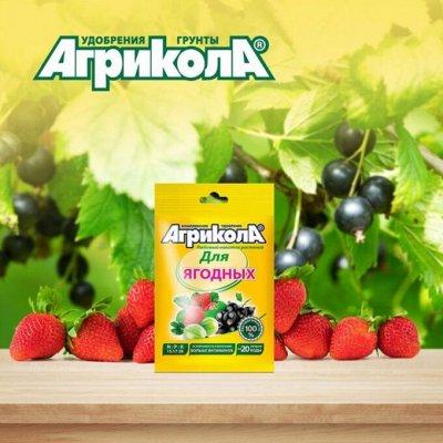 Агрикола! + Опрыскиватели! Садовый инструмент!   — Удобрения для овощных и ягодных культур — Органо-минеральные