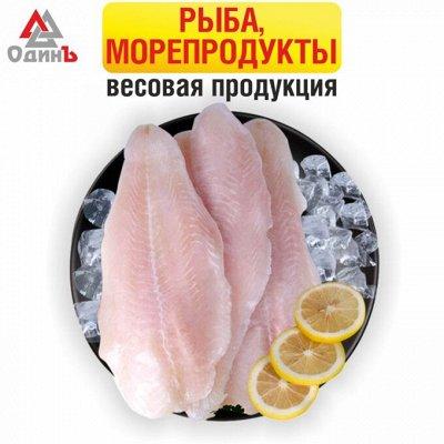 Дары моря — Весовая продукция. Рыба, морепродукты. — Свежие и замороженные