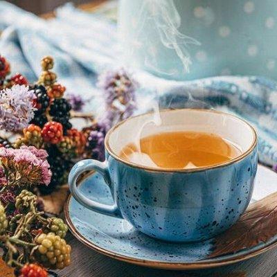 Оливковое масло Еxtra,  Pomace-Италия  + Здоровое питание  — ИВАН-ЧАЙ! Эликсир здоровья и долголетия — Чай
