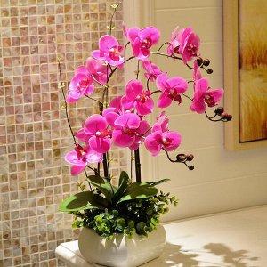Орхидея Прекрасные композиции из искусственных орхидей. Украсят любое пространство, как личное, так и рабочее. Точно «приживутся» и в ванной комнате, и на кухне. Будут цвести всегда.  Не отличить от ж