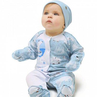 Яркая, качественная одежда по супер ценам — Коллекция лесная сказка (хиты) — Для новорожденных