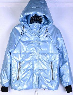 2120-S Куртка на синтепоне