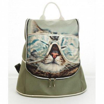 Nordi - Сумки твоей мечты!👜 Натуральная кожа! ✅Качество. — Женская сумка- рюкзак Dominika — Рюкзаки