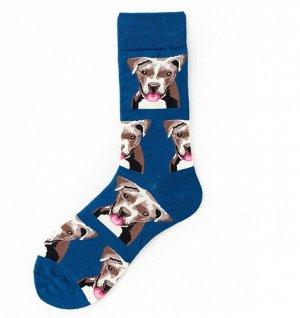 "Носки мужские, принт ""Собаки"", цвет синий"