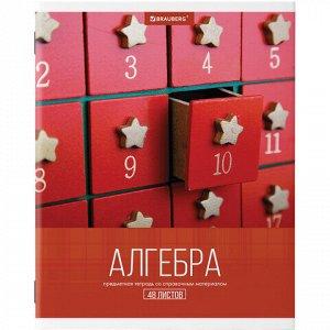 Тетрадь предметная КЛАССИКА XXI 48 листов, обложка картон, АЛГЕБРА, клетка, подсказ, BRAUBERG, 403940
