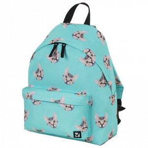 Рюкзак BRAUBERG универсальный, сити-формат, Cats, 20 литров, 41х32х14 см, 229881