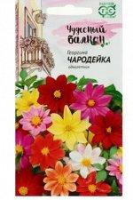 """Семена цветов Георгина """"Чародейка"""", смесь, серия Чудесный балкон"""