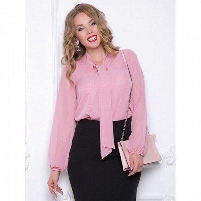 Diolche. Женская одежда от любимого бренда — Блузки