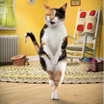 ЗОО Мир - корма для кошек и собак — Наполнители для кошек и грызунов — Туалеты и наполнители