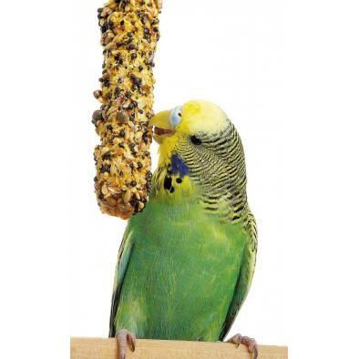ЗОО мир - корма для кошек и собак — Корма и лакомства для птиц — Корма