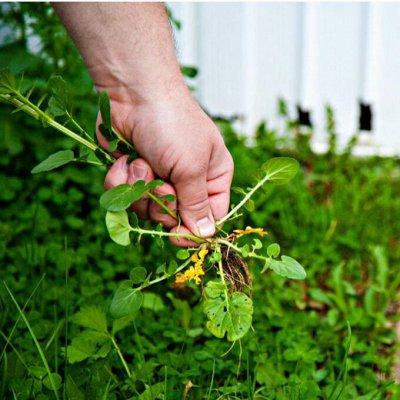 Садово-Огородная Ярмарка🌿 уДачный сезон.  — Защита от сорняков🥀 — Защита от сорняков