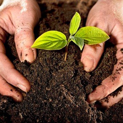 Садово-Огородная Ярмарка🌿 уДачный сезон. Новинки — БИОсоставы/ компосты 🍀 — Удобрения и агрохимия