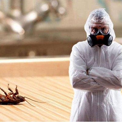 Садово-Огородная Ярмарка🌿 уДачный сезон.  — От тараканов/ крыс/ кротов🐀 — Средства от тараканов, клопов, грызунов и насекомых