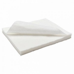 Салфетки одноразовые ЧИСТОВЬЕ нестерильные, комплект 100 шт., 25х30 см, спанлейс 40 г/м2, белые, 00-146