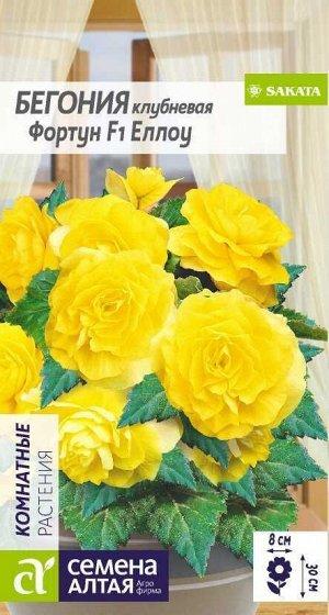 Цветы Бегония Фортун Еллоу клубневая/Сем Алт/цп 5 шт.
