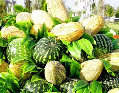 Семена Алтая. — Арбузы, Дыни — Семена овощей