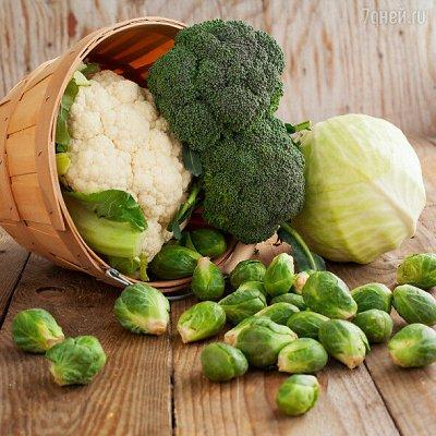 Семена Алтая. — Капуста — Семена овощей