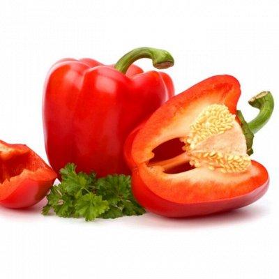 Семена Алтая. — Перец — Семена овощей