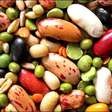 Семена Алтая. — Бобы, Горох, Кукуруза, Фасоль — Семена овощей