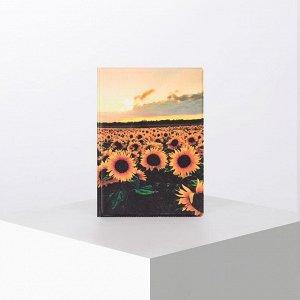 Обложка для паспорта, цвет разноцветный 5180165