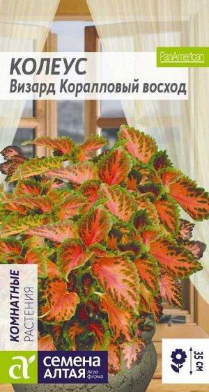 Цветы Колеус Визард Коралловый Восход/Сем Алт/цп 10 шт.