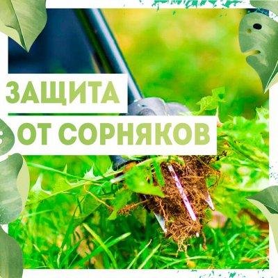 Нужная покупка👍 Залог эффективного ухода за садом — Защита от сорняков🥀 — Защита от сорняков