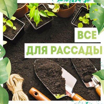 Нужная покупка👍 Двигай здоровье в массы: стань рыбаком-асом! — Все для рассады🌿 — Сад и огород