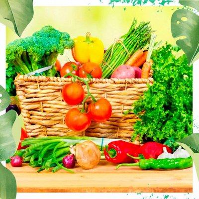Нужная покупка👍 Комнатные цветы - выращивание и уход — Белый пакет: овощи/ ягоды/ цветы