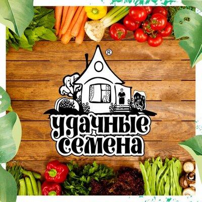 Нужная покупка👍 Комнатные цветы - выращивание и уход — Удачные семена: овощи/ цветы (белый пакет)