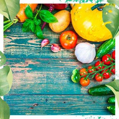 Нужная покупка👍 Комнатные цветы - выращивание и уход — Цветной пакет: разное