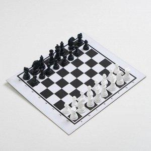 """Настольная игра """"Шашки-Нарды-Шахматы"""", поле 21.7х18.5, d=1.3 см"""