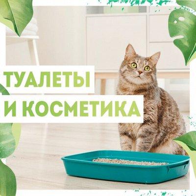 Нужная покупка👍 Грунт для рассады и комнатных растений — Уход🐈 — Для животных