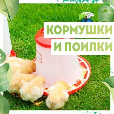 Нужная покупка👍 Защита от ожогов, грызунов и вредителей — Кормушки/ поилки🐔 — Для животных