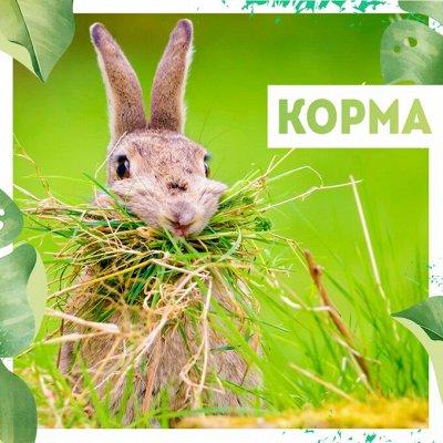 Нужная покупка👍 Открываем сезон посева — Корма🦃 — Для животных