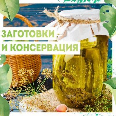Нужная покупка👍Чистый дом — Заготовки/ консервация — Заготовки и консервация
