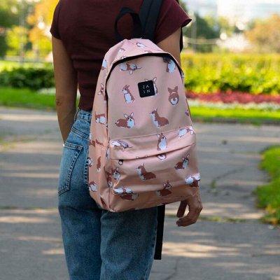 Рюкзаки и сумки. Большой выбор. наличие — Городские рюкзаки. ZAIN, Mr. Ace Homme, Forever cultivate — Рюкзаки