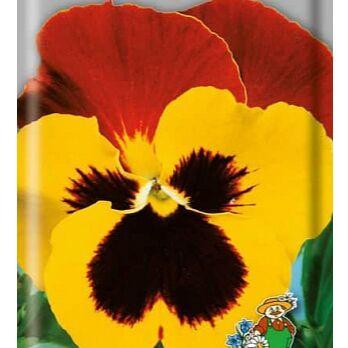 Семена от бегонии до петунии, а также семена овощей и зелени — Семена двулетних цветов — Семена двулетние