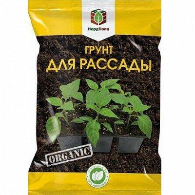 Семена Алтая — Грунты