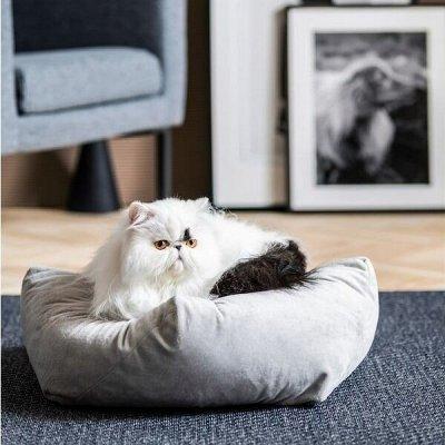 ✔IKEA 505♥ Эра милых динозавров♥  — IKEA вашим питомцам — Для животных