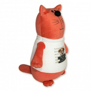 """Антистрессовая игрушка """"Кот в футболке""""(собака)"""