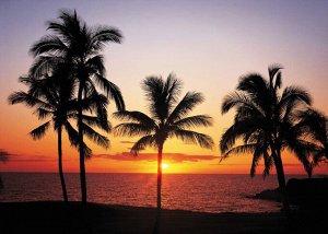 Фотообои  Гаваи